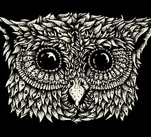 Staring owl by Lee Mullen