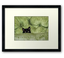 Green-Eyed Girl On Papason Chair Framed Print