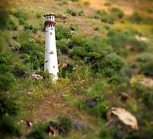 Laguna Beach Light Tower by Henrik Lehnerer