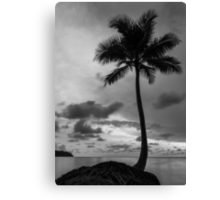 Palm tree silhouette in black and white Canvas Print