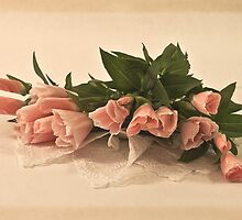 Peach Godetia's And Lace  by Sandra Foster