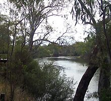 Goulburn River at Seymour Vic Australia by Margaret Morgan (Watkins)