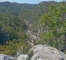 Valley of Diamonds, Crows Nest N.P, Qld, Australia by Margaret  Hyde