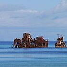 Snorkellers paradise (panorama) by Margaret  Hyde