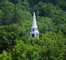 Church Steeple In The Green by Gary Benson