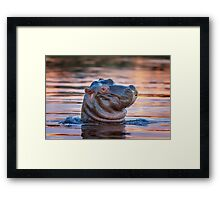 Youthful Double-chin Framed Print