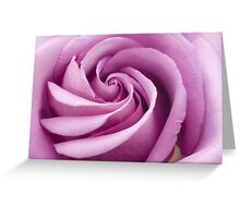 Pink Rose Folded To Perfection Greeting Card