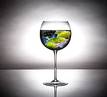 Glass of the Earth by Kaylee Garland