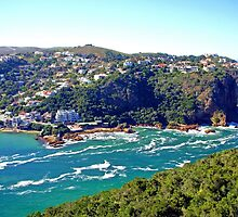 Knysna, South Africa by Margaret  Hyde