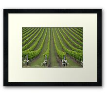 White Christmas, Or Red? (Depends On The Colour Of Your Wine!) Framed Print