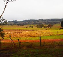 Northern Highway Tooborac Vic Australia by Margaret Morgan (Watkins)