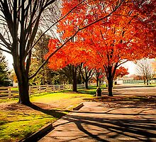 Polen Farm Dayton Ohio Shadows of Fall by pjm286