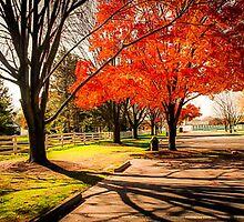 Polen Farm Dayton Ohio Shadows of Fall by pjm286