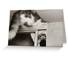 Moments With Max... Greeting Card