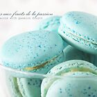 Macarons aux fruits de la passion II by the-novice
