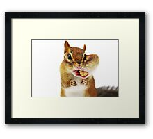 Would you have a smaller peanut?... Framed Print