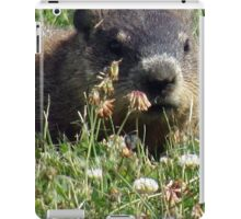 Groundhog, Montreal iPad Case/Skin