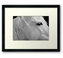 A Horse With No Name Framed Print