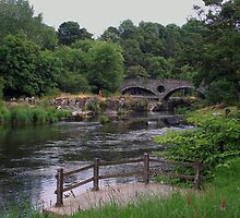 Cenarth Bridge by trish725