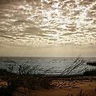 January Sky by Kevin McLeod