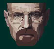 Do You Know Me ? I'm The Danger Breaking Bad by aurel09