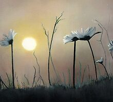 Daisies at Dusk by Linda Woodward