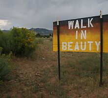 Walk In Beauty- Navajo Nation Inspiration by Tara Golden