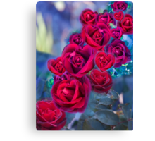 Heart Shaped Roses Canvas Print