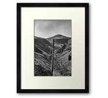 After The 2000 Cerro Grande Fire Los Alamos II Framed Print