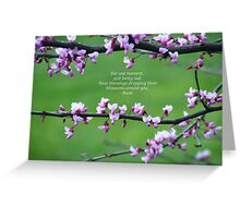 Blossoms Around You Greeting Card