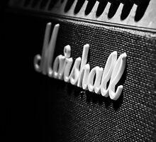Amplify by Pixelglo Photography