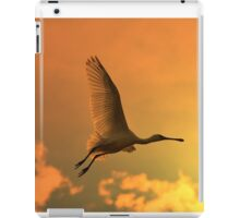 Spoonbill Stork - Sunset Flight of Color - African Wild Birds iPad Case/Skin