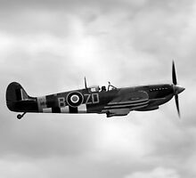 Vickers-Supermarine Spitfire IX (Monochrome Version) by Wayne Gerard Trotman
