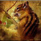 Animals Inner Spirit by Crista Peacey