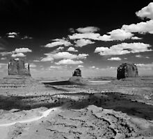 Timeless Trails by Barbara Burkhardt