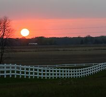 Sunset fenceline by heartprint