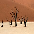 Ghosts of the Deadvlei II by Jennifer Sumpton