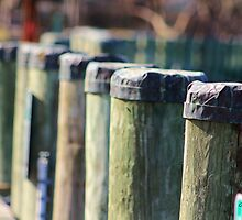 Pier Pilings by Gilda Axelrod