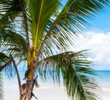 Beautiful tropical beach Sticker