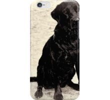 Toby's Been Swimming...... iPhone Case/Skin