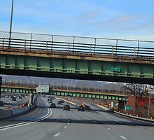 Driving Through Staten Island by Gilda Axelrod