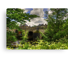 The Overgrown Riverbank Canvas Print
