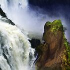 Barron Falls, Barron Nationalpark, Tablelands  by Angelika  Vogel