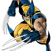 Wolverine by harrybircham