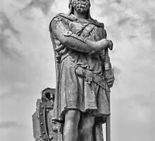 Robert the Bruce by M.S. Photography & Art
