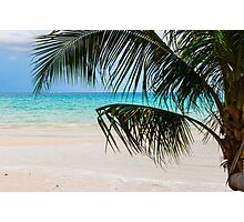 Exotic tropical beach with white sand and blue waters Photographic Print