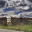 Dry Stone Wall and Gate by Karen Martin