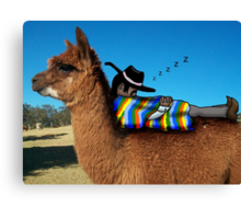 Sleeping Alpaca Gaucho Canvas Print