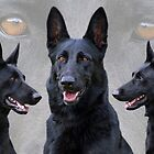 Black German Shepherd Collage by Sandy Keeton