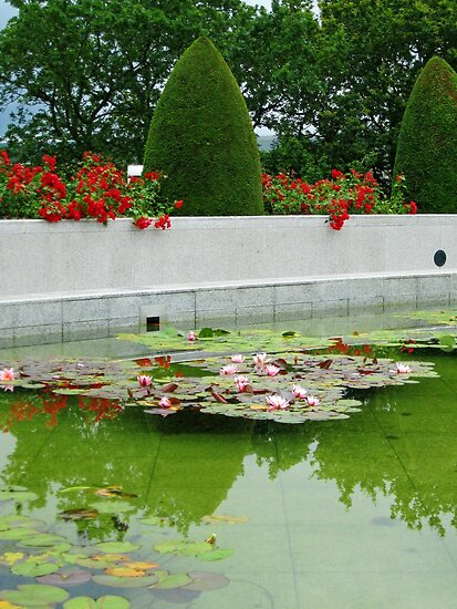 Roses and Water Lilies by kathrynsgallery